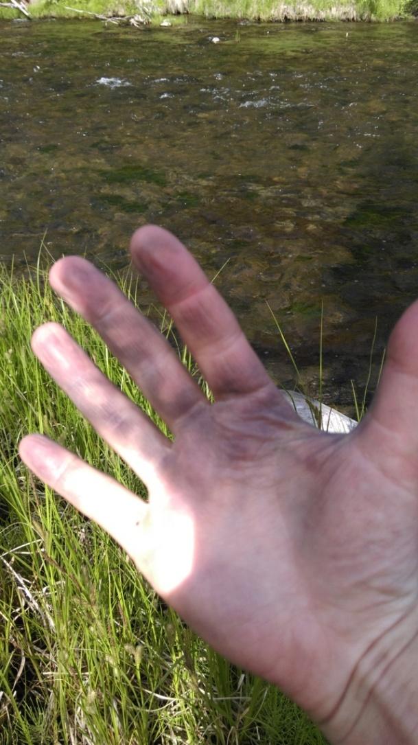 the aluminium paddles always blackened my hands