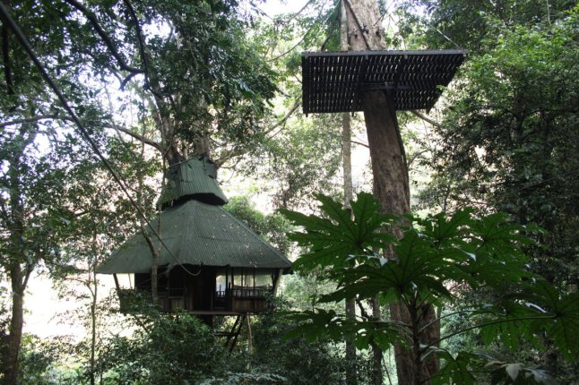 one of the sleeping tree houses