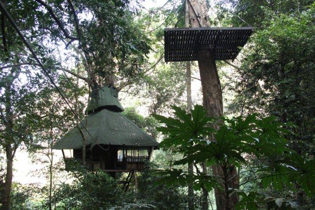 one of the sleeping tree houses
