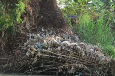 waste tree