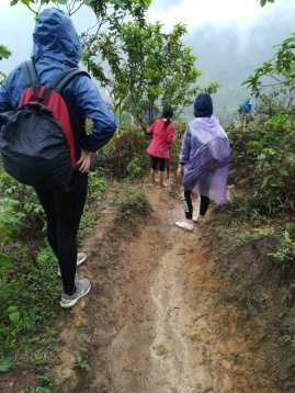 slippery path